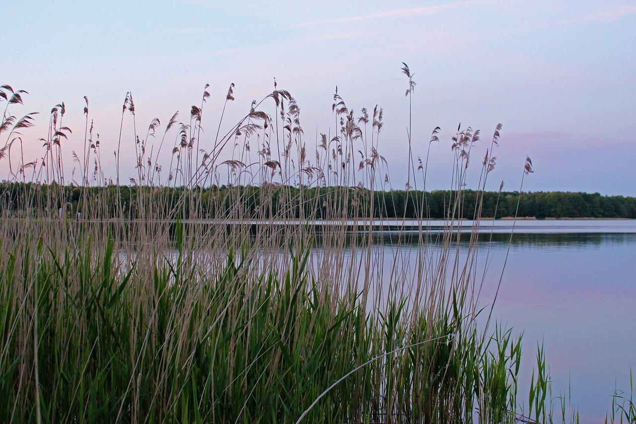 Reiseziel Mecklenburgische Seenplatte